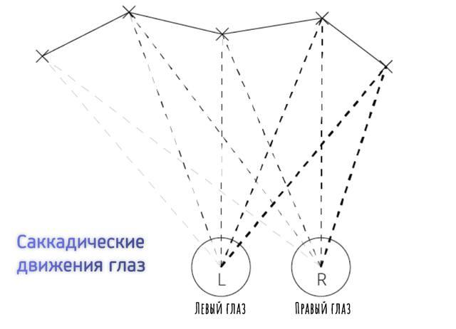 Схема саккадических движений глаз при чтении