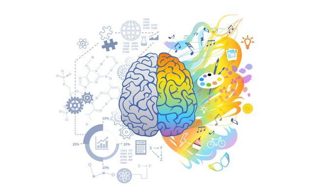 Концепция отличий функций полушарий мозга